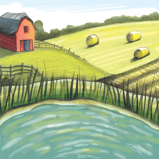 Farm and pond backdrop by Shanda McCloskey
